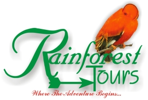 rainforest-tours-logo