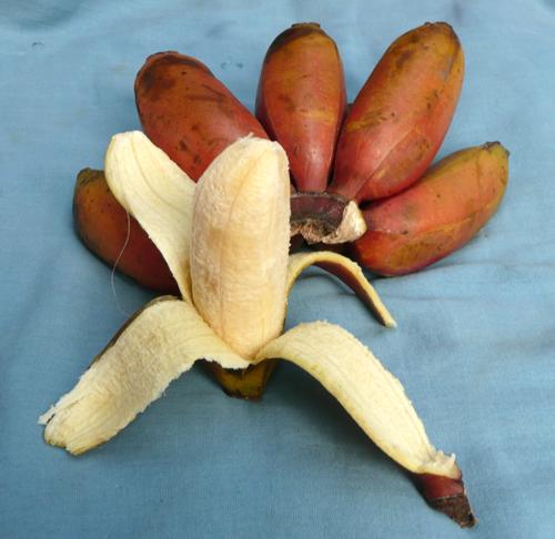 Plátano morado pelado